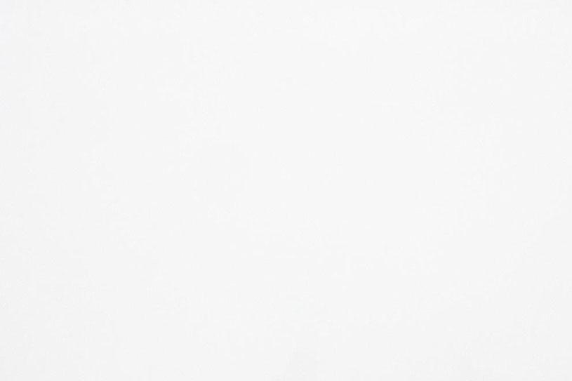 AQ302-Pure-White-Quartz-Slab-2